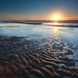 Gold sunset over North sea sand beach at low tide — Stock Photo #42413807