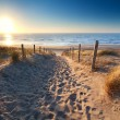 Path to sand beach in North sea — Stock Photo