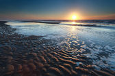 Gold sunset over North sea sand beach at low tide — Stock Photo