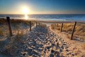 Sunshine over path to beach in North sea — Stock Photo
