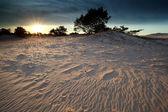 Pôr do sol sobre as dunas de areia — Foto Stock