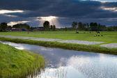 Sunbeams through storm sky over farmland — Stock Photo