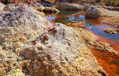 Stones by acidic river Tinto in Spain — Stock Photo
