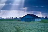 Sunbeams over wooden hut on field — Stock Photo
