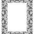Vintage frame with floral elements — Stock Vector #29631797