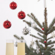 Christmas tree — Stock Photo #16234727