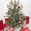 Christmas tree — Stock Photo #16234853