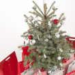 Christmas tree — Stock Photo #16234887