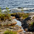 Ladoga shore — Stock Photo