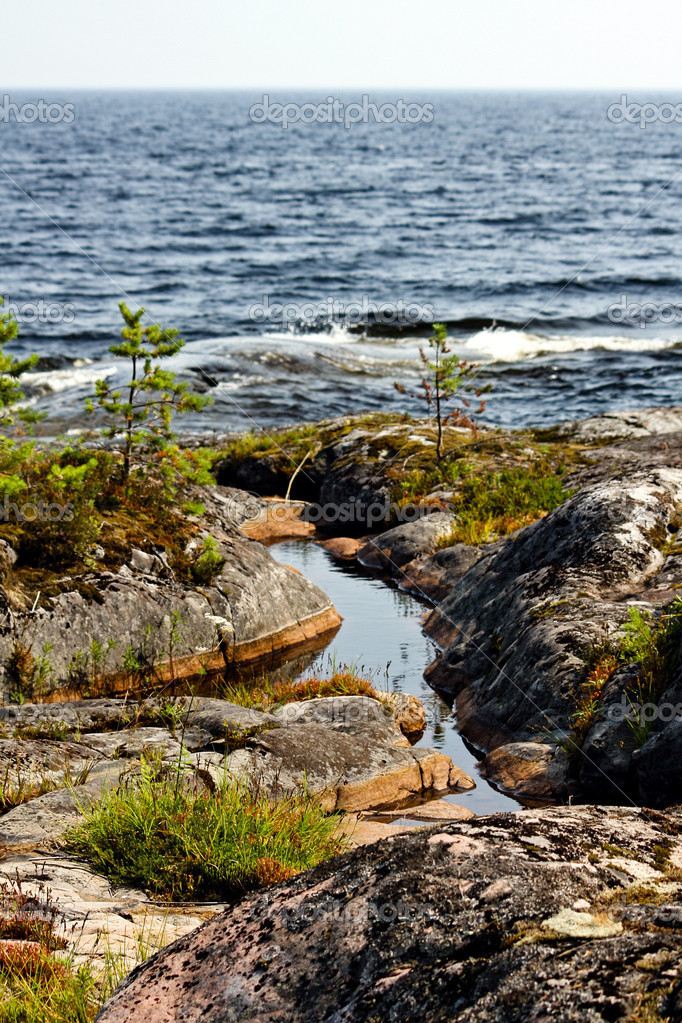 Ladoga shore in Russia — Stock fotografie #18081165