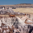 The mountains of petrify forest — Stock Photo