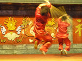 Chinese Martial Artist Performing on Stage — Stock Photo