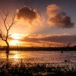 Wetland Sunset — Stock Photo