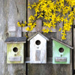 Birdhouse on old wooden fence — Stock Photo
