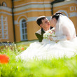 Groom and bride kissing on lawn — Stock Photo