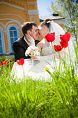 Newly married couple kissing on lawn — Stock Photo