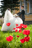 Newly married couple dancing on field with red tulips — Stock Photo
