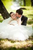 草の上に座ってと抱き締める新郎新婦 — ストック写真