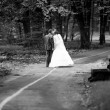 Newly married couple walking in park — Stock Photo