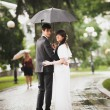 Newly married couple walking in park under rain — Stock Photo