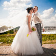 Bride with flying veil kissing groom in cheek in park — Stok fotoğraf #34097123