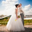 Bride with flying veil kissing groom in cheek in park — ストック写真