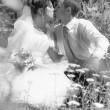 Portrait of bride and groom hugging and kissing on lawn — Stok fotoğraf #34097147