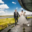 Married couple walking on embankment holding hands — Stockfoto