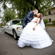 Married couple kissing on road in front of car — Stock Photo