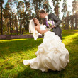 Married couple hugging on meadow at park — Stock Photo