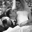 Portrait of bride sitting on tree while groom hugging her — Foto de Stock
