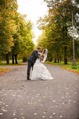 Bride and groom hugging on alley at park — Stock Photo