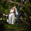 Newly married couple sitting on branch and hugging — Stock Photo