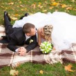 Groom and bride and bride lying on plaid at park and kissing — Stock Photo