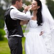 Married couple drinking champagne on brudershaft at park — Stock Photo