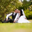 Married couple sitting on grass in park and kissing — Stock Photo #36791723