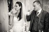 Photo of bride and groom drinking champagne after toast — Stock Photo