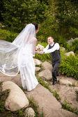 Groomstanding bonito no joelho e dando flores para noiva — Foto Stock