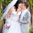 Portrait of chubby bride and lean groom kissing outdoor — Stock Photo #37456051