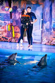 Dolphins looking at kissing couple at dolphinarium — ストック写真