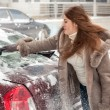 Постер, плакат: Woman cleaning car at blizzard