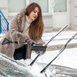 Постер, плакат: Beautiful woman cleaning car with brush after blizzard