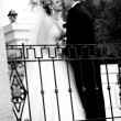 Black and white portrait of bride and groom looking at each other — Stock Photo #40639123