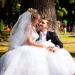 Bride sitting on grooms legs under tree at park — Stock Photo