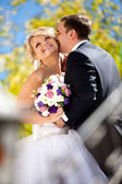 Handsome groom kissing bride in cheek at park — Stock Photo