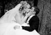 Bride sitting on on groom legs and kissing him passionately — Stock Photo