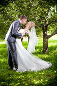 Groom bending over bride and kissing her passionately at park — Stock Photo