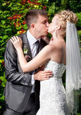 Portrait of bride and groom kissing against bushes at park — Stock Photo