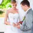 Groom putting wedding ring on brides hand at alcove — Stock Photo #41614333
