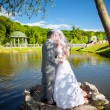Bride and groom kissing on river bank at park — Stock Photo #41614429
